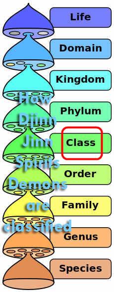 Classification of Djinn Jinn Spirit Demon Qareen Brother Rahman