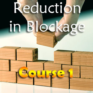Excellent Spiritual Course for Blockage Removal in Life featured Brother Rahman